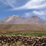 Foto del profilo di Atacama